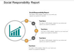 Social Responsibility Report Ppt PowerPoint Presentation File Template Cpb