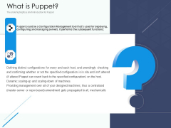 Software Configuration Management And Deployment Tool What Is Puppet Ppt Model Elements PDF