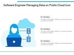 Software Engineer Managing Data On Public Cloud Icon Ppt PowerPoint Presentation Gallery Guidelines PDF