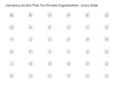 Solvency Action Plan For Private Organization Icons Slide Ideas PDF