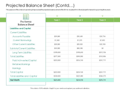 Solvency Action Plan For Private Organization Projected Balance Sheet Contd Graphics PDF