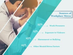 Sources Of Workplace Stress Ppt PowerPoint Presentation Summary Files