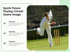 Sports Person Playing Cricket Game Image Ppt PowerPoint Presentation File Summary PDF