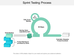 Sprint Testing Process Ppt PowerPoint Presentation Layouts Background