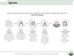 Sprints Business Ppt Powerpoint Presentation Portfolio Samples