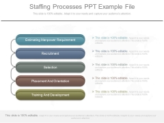 Staffing Processes Ppt Example File