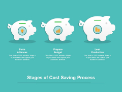 Stages Of Cost Saving Process Ppt PowerPoint Presentation File Layout Ideas PDF