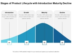 Stages Of Product Lifecycle With Introduction Maturity Decline Ppt PowerPoint Presentation Portfolio Tips PDF