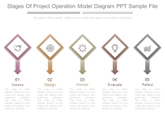 Stages Of Project Operation Model Diagram Ppt Sample File