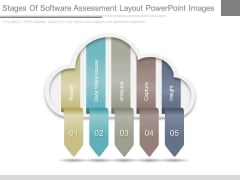 Stages Of Software Assessment Layout Powerpoint Images
