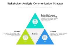 Stakeholder Analysis Communication Strategy Ppt PowerPoint Presentation File Example Introduction Cpb