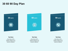 Star Performer 30 60 90 Day Plan Ppt Infographic Template Gridlines PDF