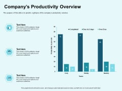 Star Performer Companys Productivity Overview Ppt File Backgrounds PDF