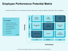 Star Performer Employee Performance Potential Matrix Ppt Slides Ideas PDF