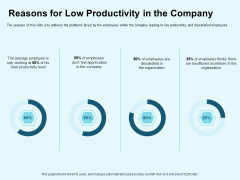 Star Performer Reasons For Low Productivity In The Company Infographics PDF