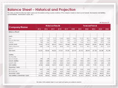 Startup Pitch To Raise Capital From Crowdfunding Balance Sheet Historical And Projection Professional PDF