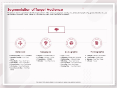 Startup Pitch To Raise Capital From Crowdfunding Segmentation Of Target Audience Portrait PDF
