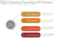 Steps To Selecting A Target Market Ppt Examples