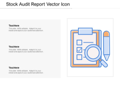 Stock Audit Report Vector Icon Ppt Powerpoint Presentation Styles Example Introduction