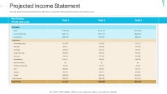 Stock Offering As An Exit Alternative Projected Income Statement Pictures PDF