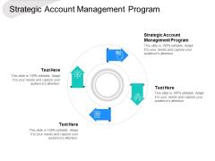 Strategic Account Management Program Ppt PowerPoint Presentation Inspiration Shapes Cpb