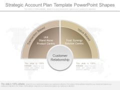 Strategic Account Plan Template Powerpoint Shapes