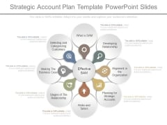 Strategic Account Plan Template Powerpoint Slides