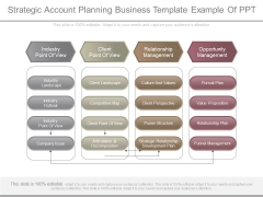 Strategic Account Planning Business Template Example Of Ppt