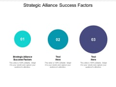 Strategic Alliance Success Factors Ppt PowerPoint Presentation Professional Files Cpb