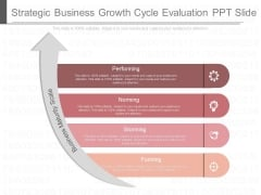 Strategic Business Growth Cycle Evaluation Ppt Slide