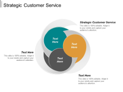 Strategic Customer Service Ppt PowerPoint Presentation Icon Rules Cpb