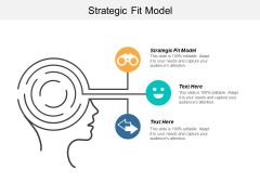 Strategic Fit Model Ppt Powerpoint Presentation Inspiration Themes Cpb