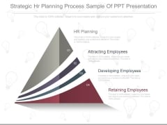 Strategic Hr Planning Process Sample Of Ppt Presentation