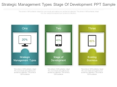 Strategic Management Types Stage Of Development Ppt Sample