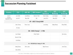Strategic Manpower Management Succession Planning Factsheet Graphics PDF