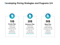 Strategic Marketing Plan Developing Pricing Strategies And Programs Private Ppt Gallery Graphics Example PDF