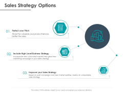 Strategic Plan For Companys Development Sales Strategy Options Ppt PowerPoint Presentation Styles Background Designs