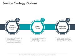 Strategic Plan For Companys Development Service Strategy Options Ppt PowerPoint Presentation Portfolio Templates