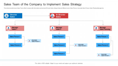 Strategic Plan To Increase Sales Volume And Revenue Sales Team Of The Company To Implement Sales Strategy Inspiration PDF