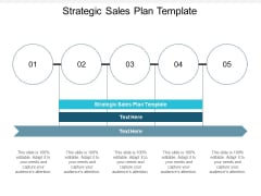 Strategic Sales Plan Template Ppt PowerPoint Presentation Gallery Slides Cpb