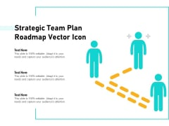 Strategic Team Plan Roadmap Vector Icon Ppt PowerPoint Presentation File Show PDF