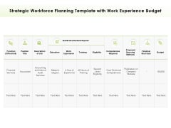 Strategic Workforce Planning Template With Work Experience Budget Ppt PowerPoint Presentation Visual Aids Pictures