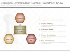 Strategies Diversification Sample Powerpoint Show