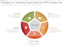 Strategies For Reaching Target Audiences Ppt Example File