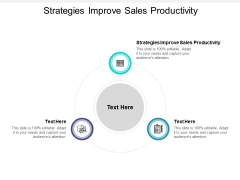 Strategies Improve Sales Productivity Ppt PowerPoint Presentation Visual Aids Layouts Cpb