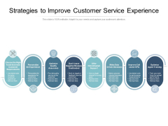 Strategies To Improve Customer Service Experience Ppt PowerPoint Presentation File Structure PDF