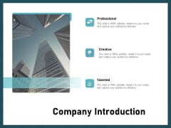 Strategies To Win Customers From Competitors Company Introduction Infographics PDF