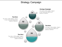 Strategy Campaign Ppt PowerPoint Presentation Professional Layout Cpb