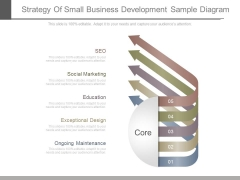 Strategy Of Small Business Development Sample Diagram