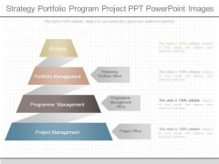 Strategy Portfolio Program Project Ppt Powerpoint Images